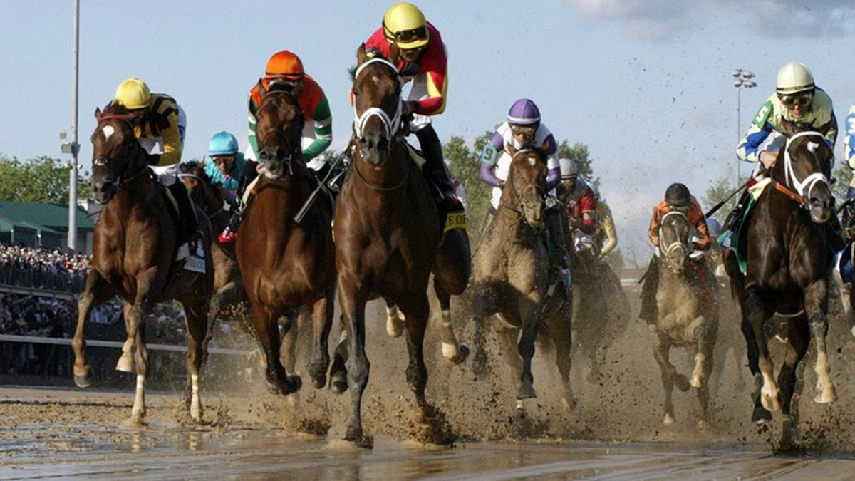 Lo Duca: How I Got Hooked On Horse Racing article feature image