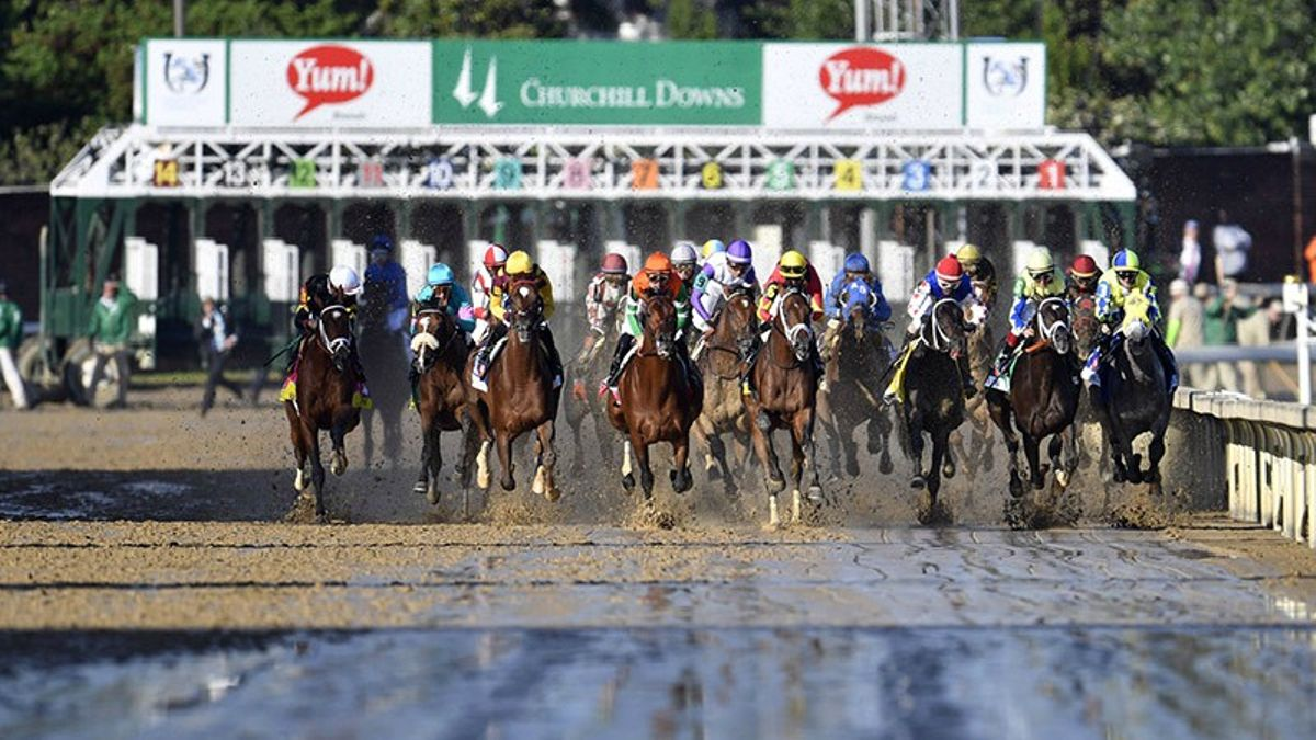 Horse Racing 101: Terms You Need to Know article feature image