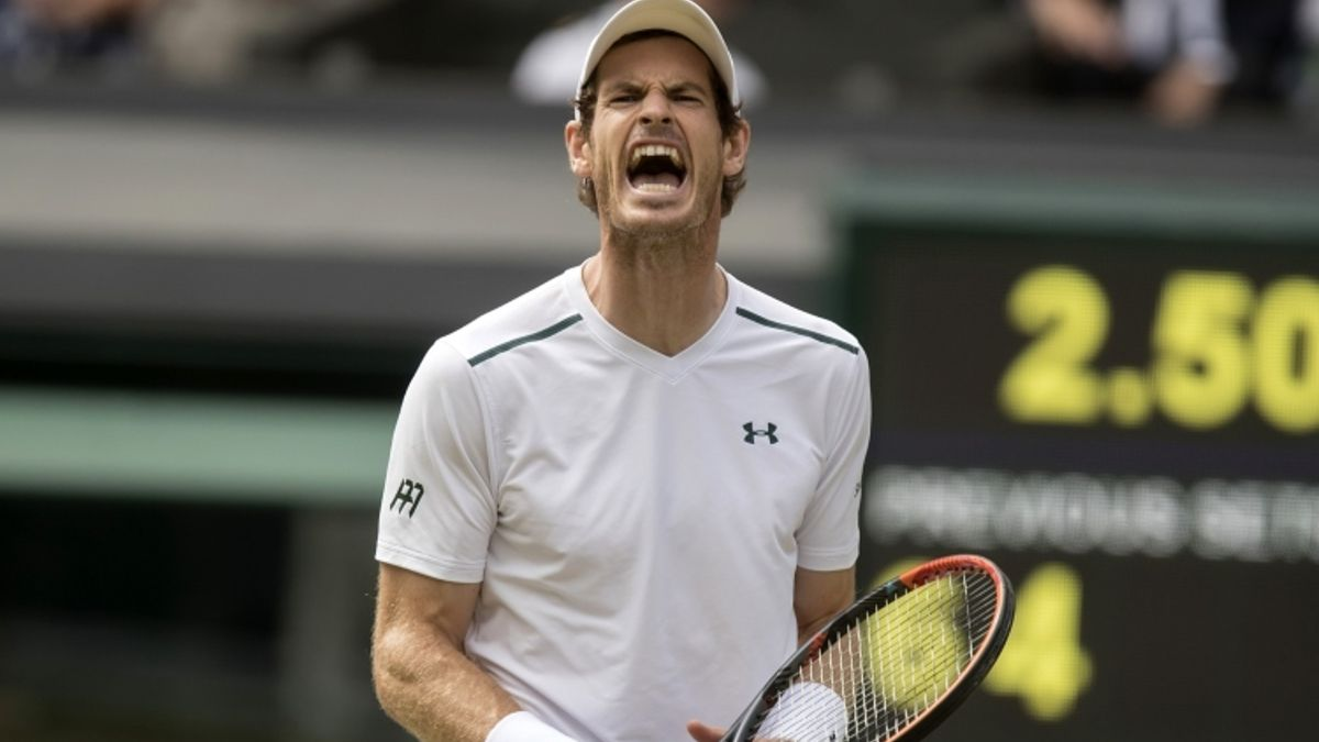 Tuesday ATP Grass Betting Preview: Andy Murray Returns in London article feature image
