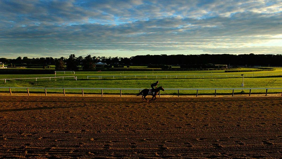 Lo Duca: My Card For Belmont Gold Cup Day article feature image