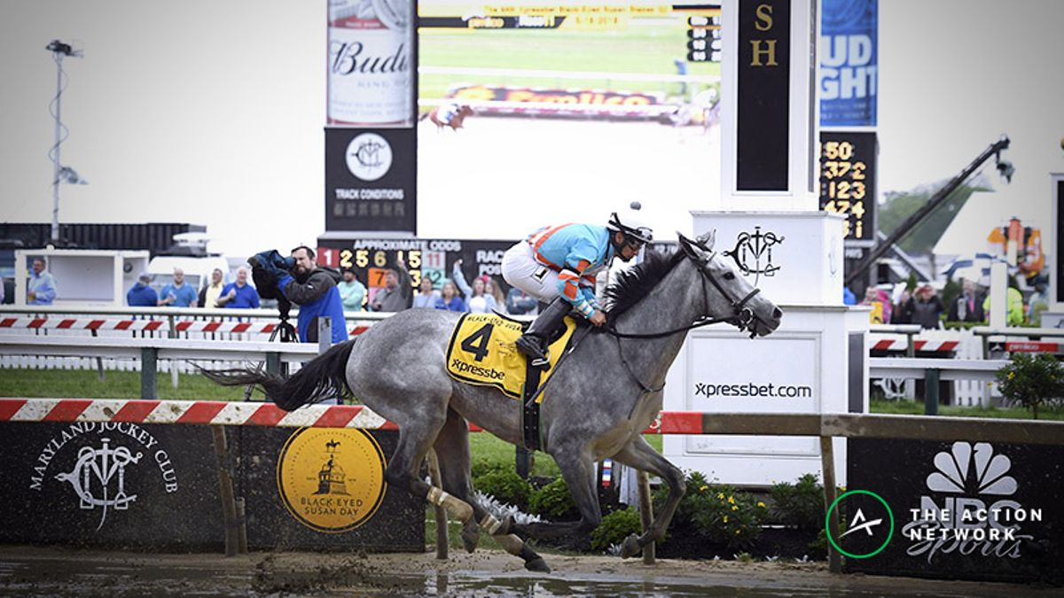 2019 Black Eyed Susan Odds, Preview: Vulnerable Favorites Should Leave the Door Open article feature image