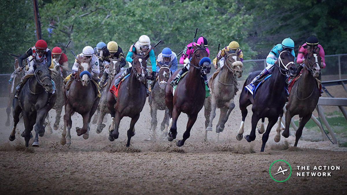 Party over Prestige? The Preakness Stakes Has an Identity Crisis article feature image