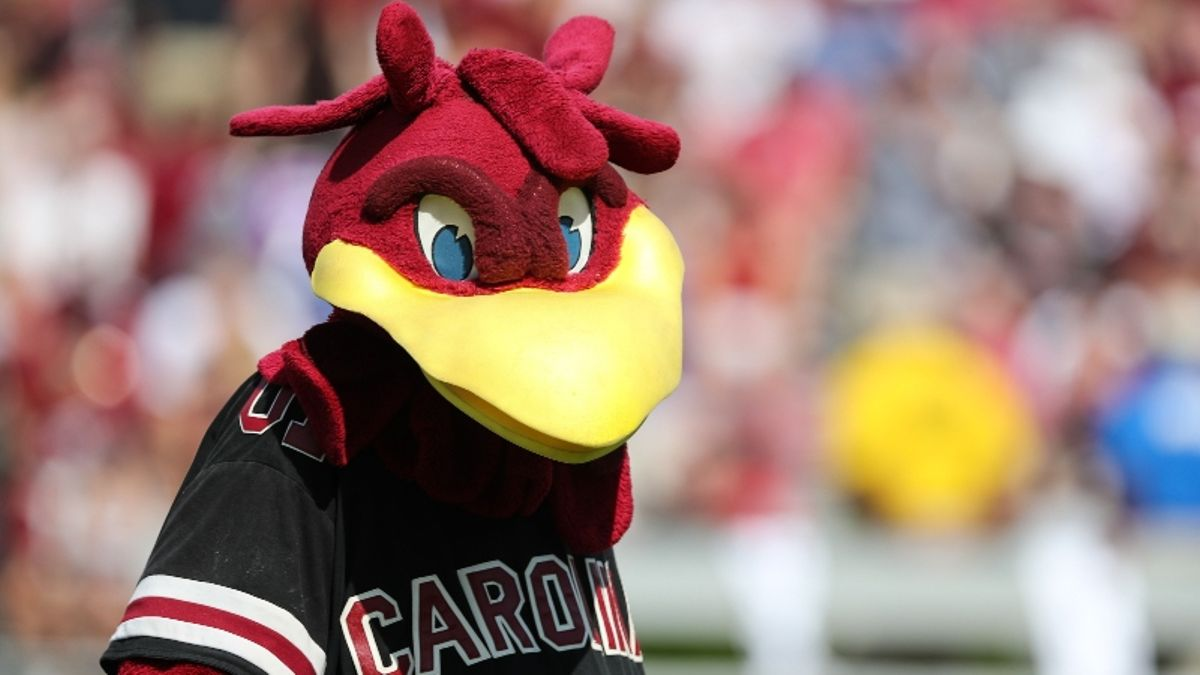 South Carolina vs. UNC Betting Odds & Preview: Is Anyone Willing to Back Tar Heels? article feature image