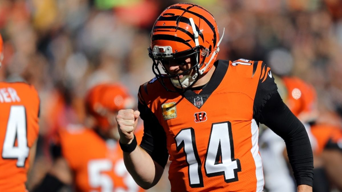 49ers vs. Bengals Betting Odds & Picks: The Line Move Says It All article feature image