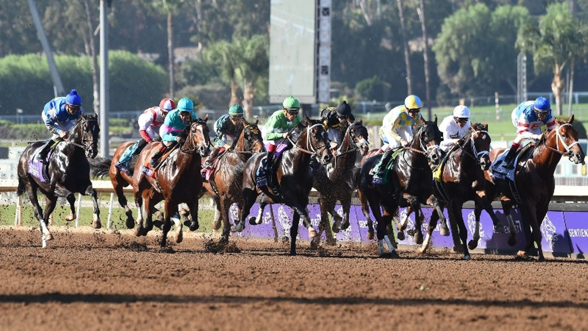 2019 Breeders' Cup Classic Day Picks, Bets and Exotics Preview: Which Favorites Are Vulnerable at Santa Anita? article feature image
