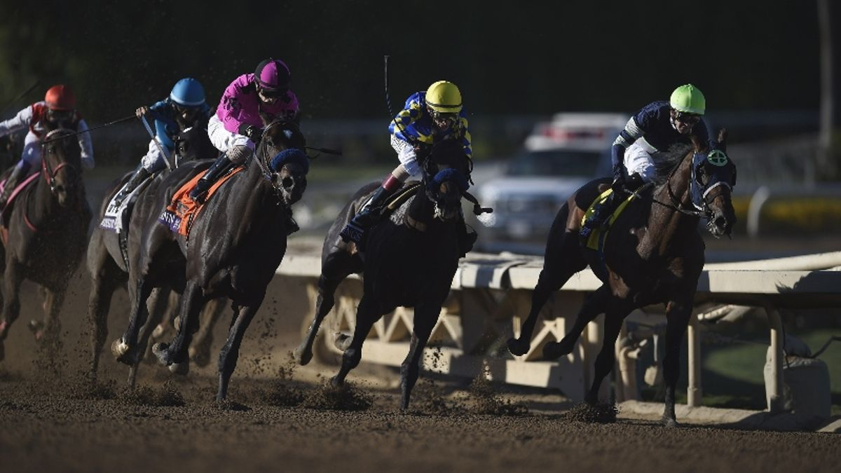 Zerillo's 2019 Breeders' Cup Classic Card: Bet Mitole to Win the Sprint? article feature image