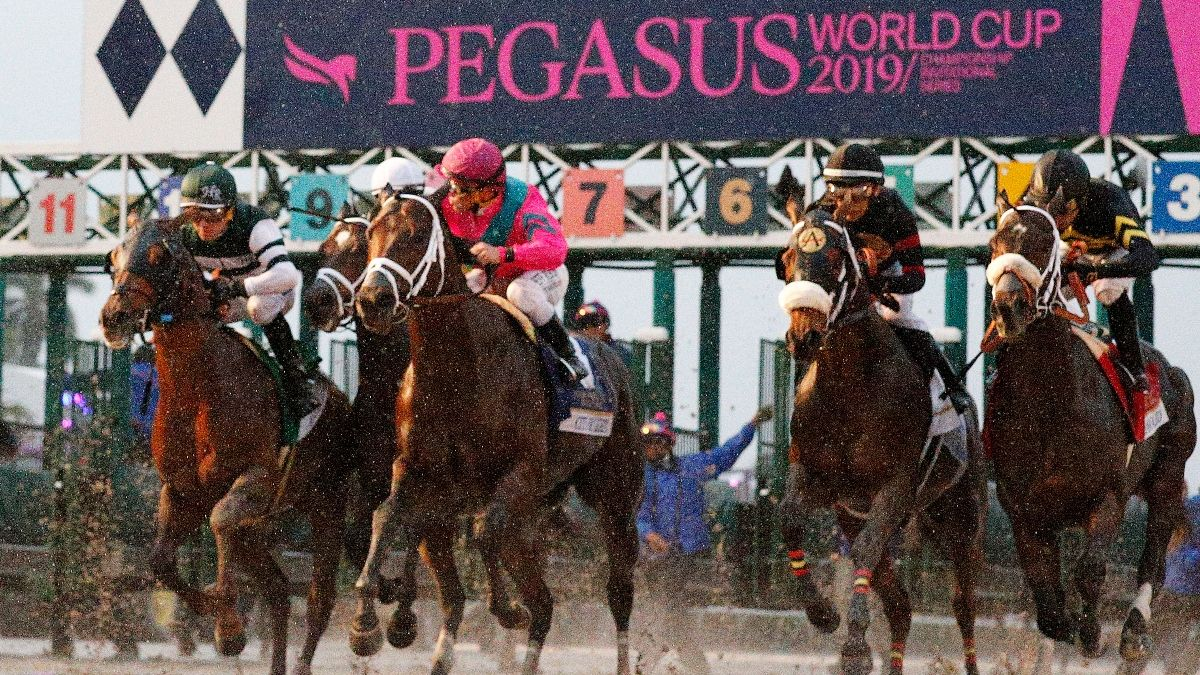 Zerillo: My Exotics Card For 2020 Pegasus World Cup Day article feature image