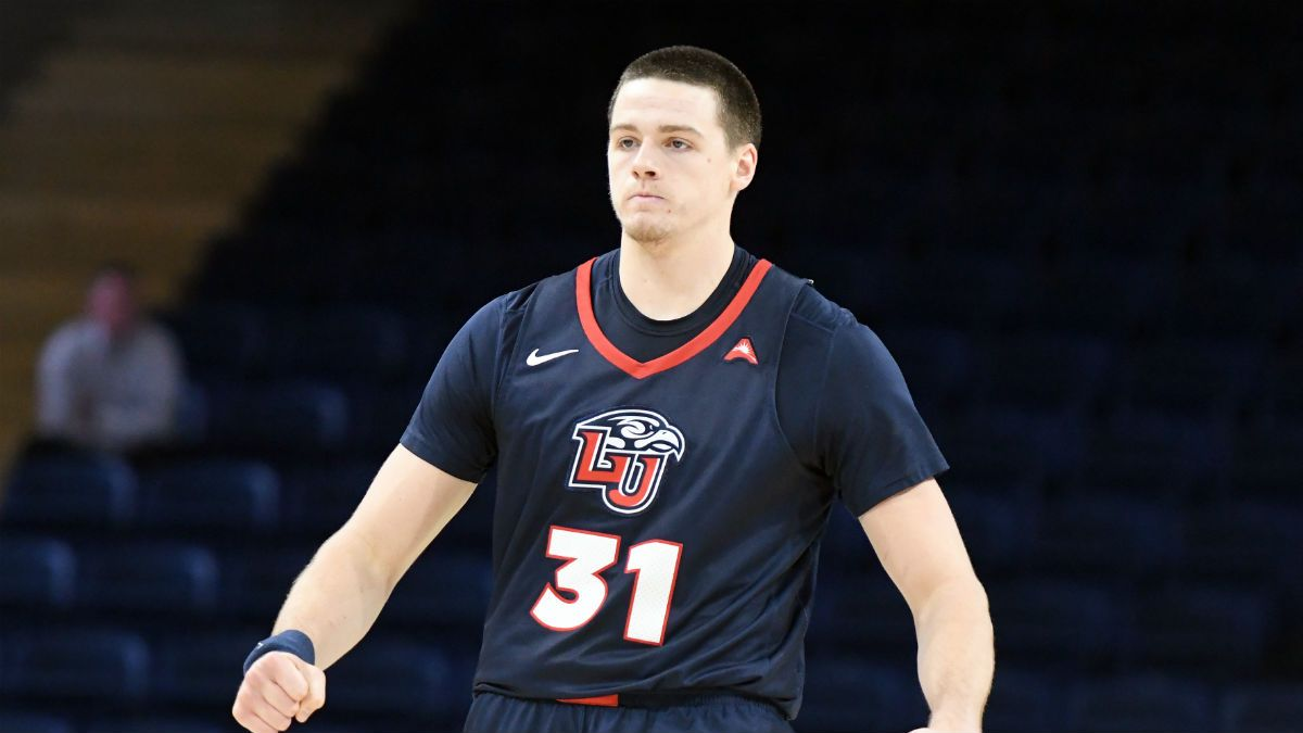 College Basketball Odds & Picks: NJIT at Liberty (February 15, 2020) article feature image