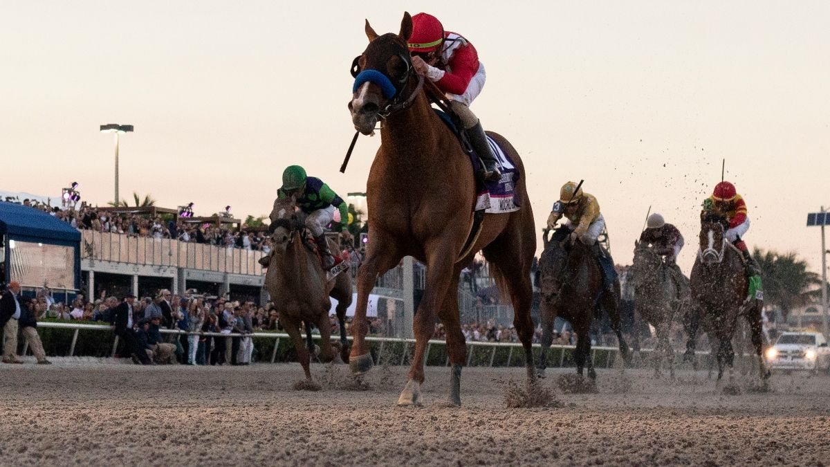 2020 Florida Derby Picks, Odds & Best Bets: The Horses That Can Upset Favorite Tiz the Law article feature image