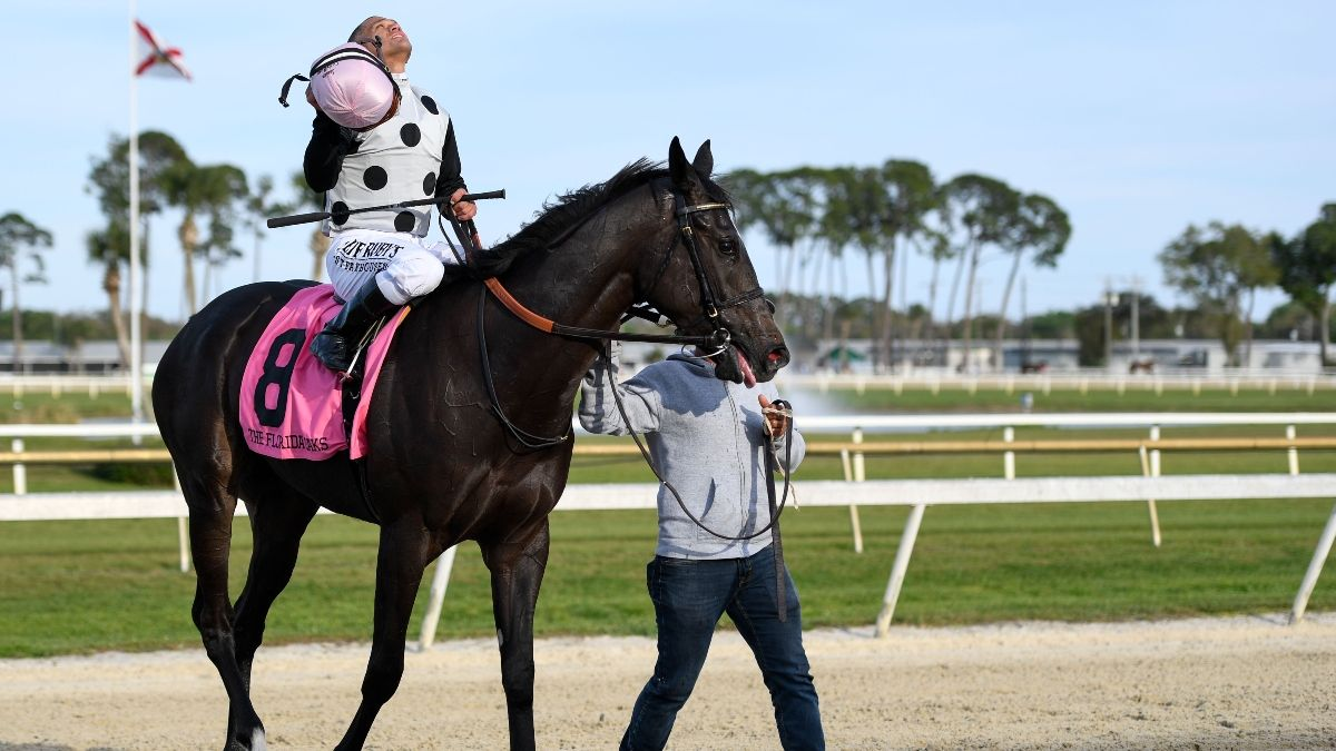 Horse Racing Picks & 2020 Florida Derby Exotics & Power Rankings: The Longshot Horses to Use in Exactas, Trifectas article feature image