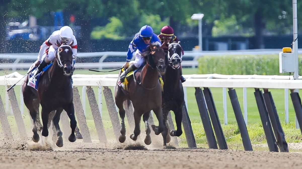 Go horse betting promo codes all star sports betting
