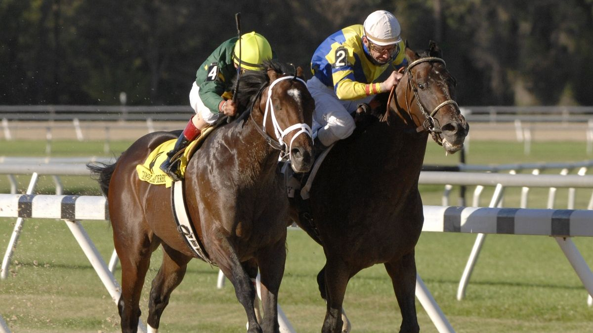 Horse Racing Picks for Friday, April 17: Best Value Bets for Gulfstream Park, Oaklawn Park, and Tampa Bay Downs article feature image