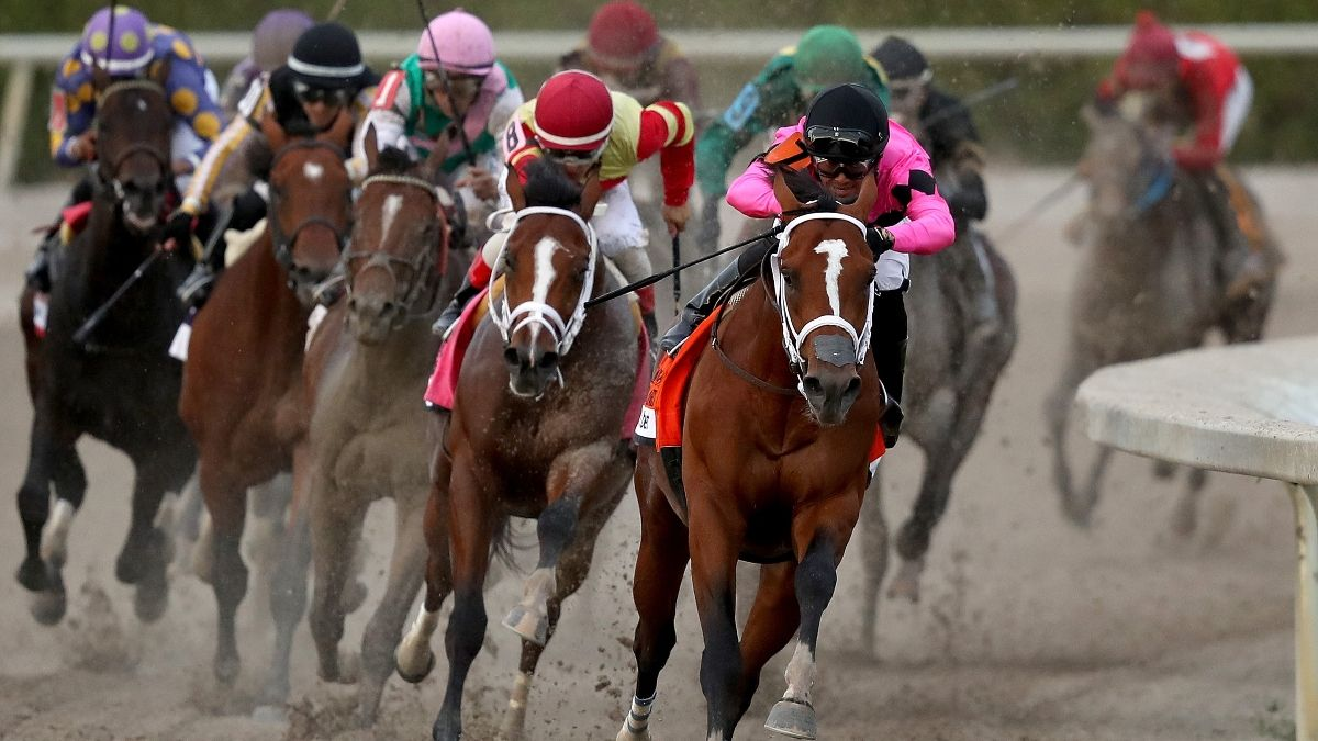 Wednesday Horse Racing Picks & Exotics: 3 Best Bets for Gulfstream Park (June 10) article feature image