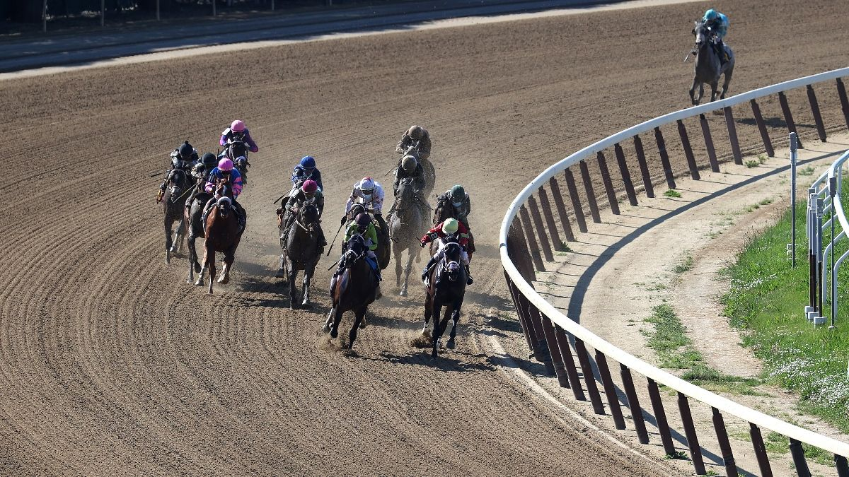 Belmont Stakes Picks to Win and Longshots: Our Staff's Best Bets and Sleepers for the First Triple Crown Race article feature image