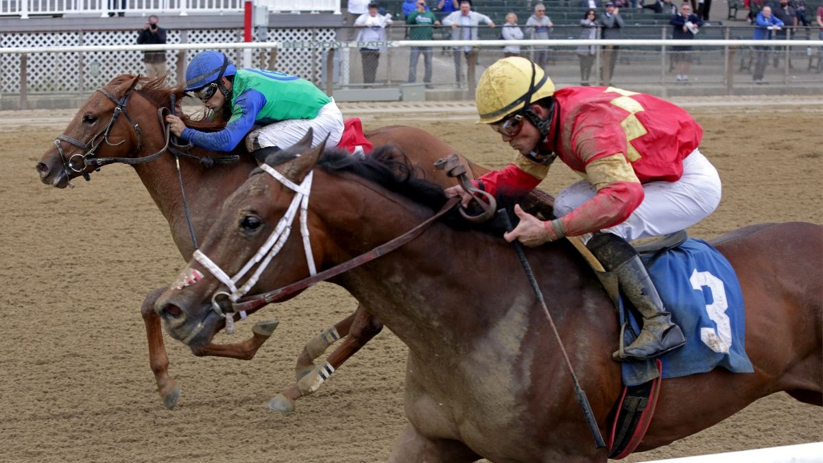 Horse Racing Picks for Wednesday, June 3: Best Bets, Exotics and Longshots for Belmont Park's Return article feature image