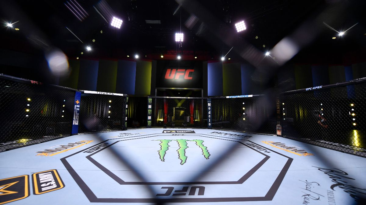 Updated UFC Fight Night Betting Odds: Gustavo Lopez Replaces Ray Borg on Saturday's Main Card article feature image