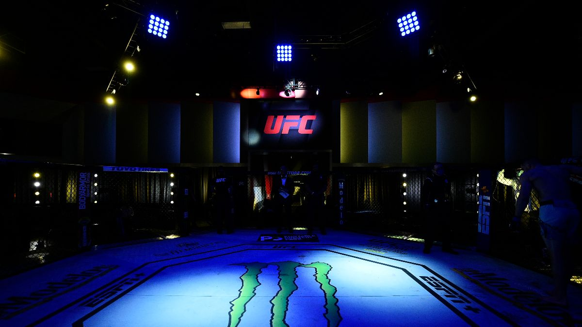 UFC Betting Picks & Predictions: Our Best Bets for Herman vs. Meerschaert, Luque vs. Brown article feature image
