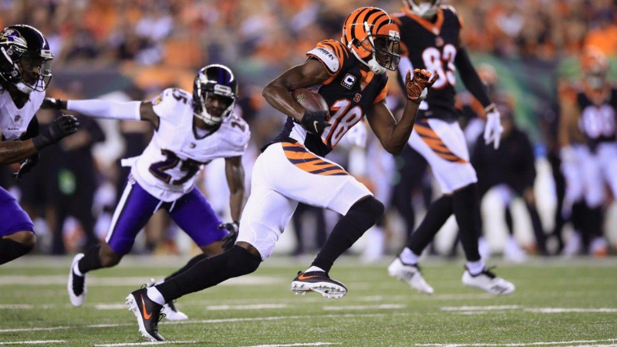 Cincinnati Bengals Betting Primer: Super Bowl Odds, Win Total Pick, More article feature image