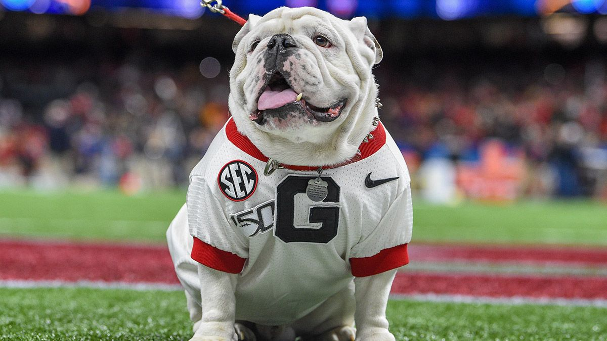 Georgia vs. Auburn Odds & Promo: Bet $5, Win $100 if Georgia Covers +50 article feature image