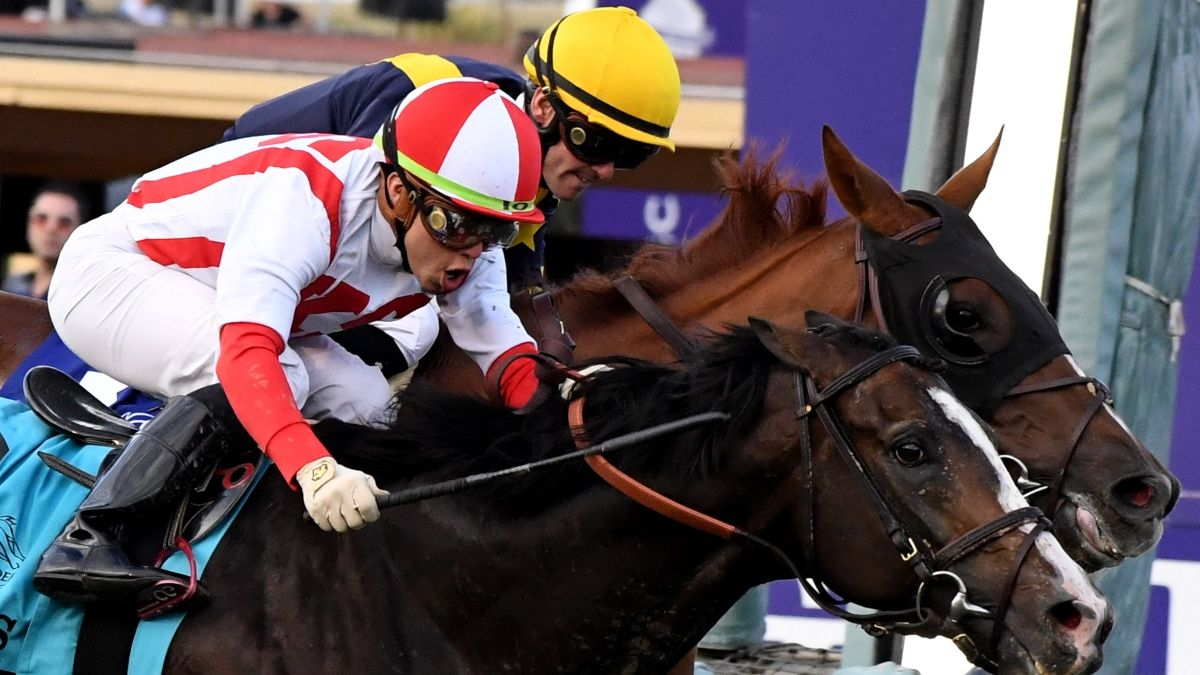 2020 Breeders' Cup Betting Guide, Odds & Picks: Longshots, Exotics & Best Bets for 9 Races on Saturday article feature image