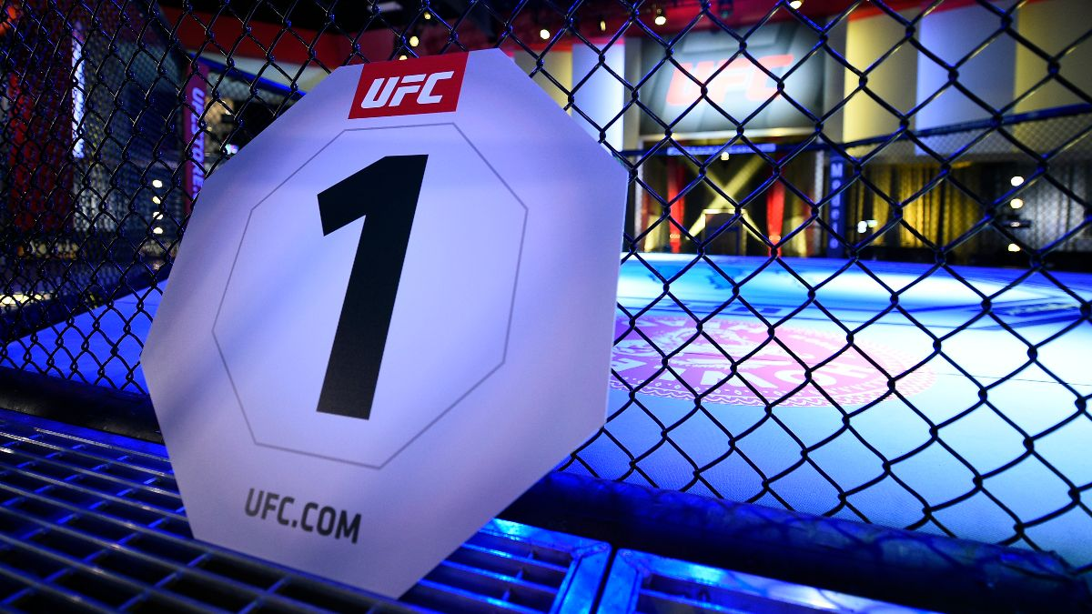 Ufc fight night betting lines soccer betting handicappers