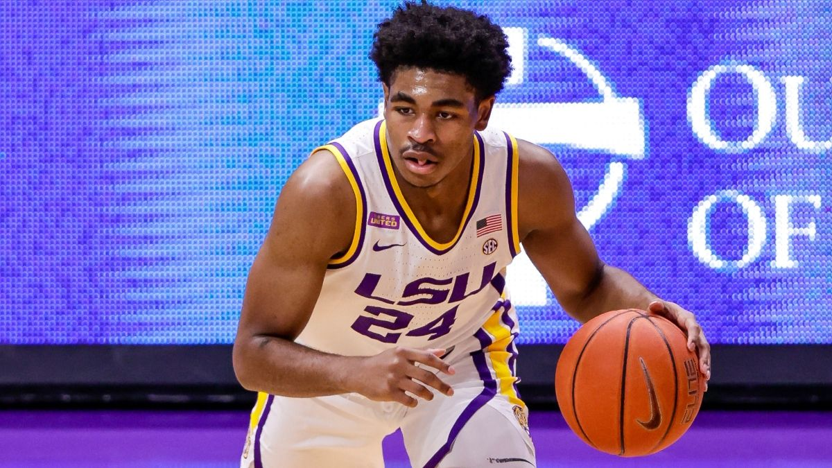 LSU vs. Florida College Basketball Odds & Picks: Betting Value on Tigers in SEC Showdown article feature image