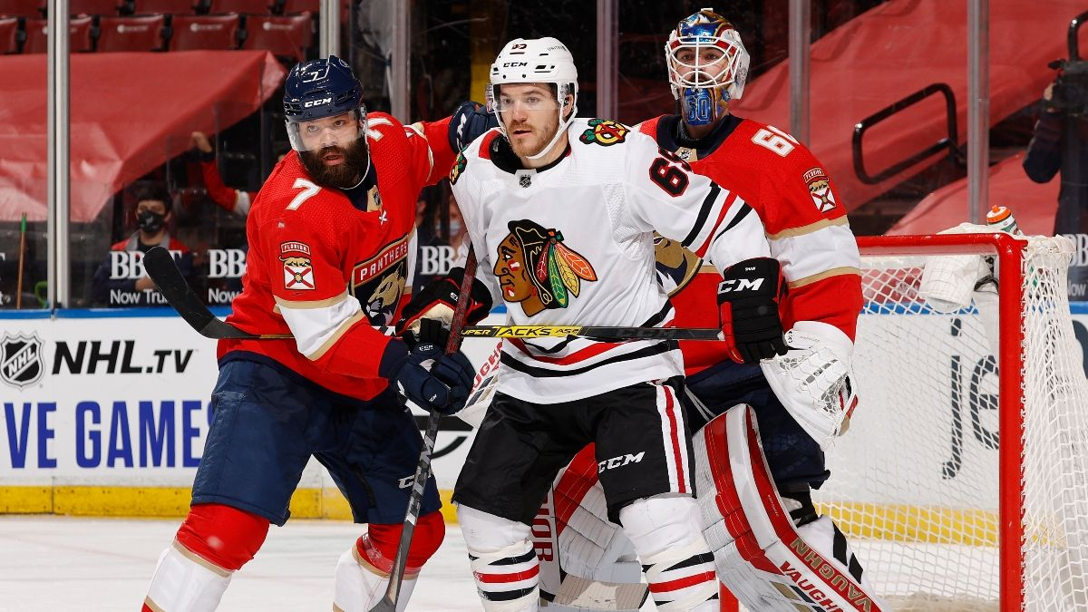 NHL Betting Picks: Our Favorite Bets for Tuesday, Jan. 19, Including Red Wings-Blue Jackets & Blackhawks-Panthers article feature image