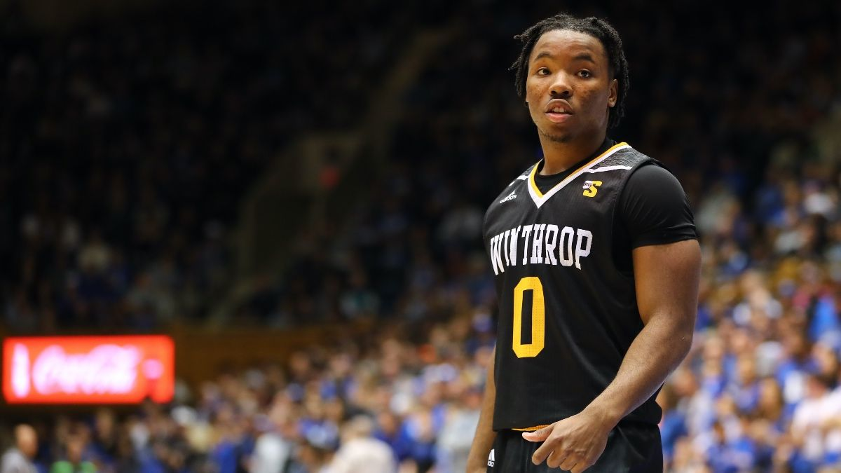 College Basketball Mid-Major Betting Report: Breaking Down Winthrop, Grand Canyon & Davidson article feature image