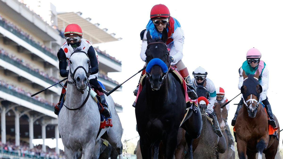 Preakness Stakes Medina Spirit Odds, Promo: Get a $300 Risk-Free Bet at TVG! article feature image