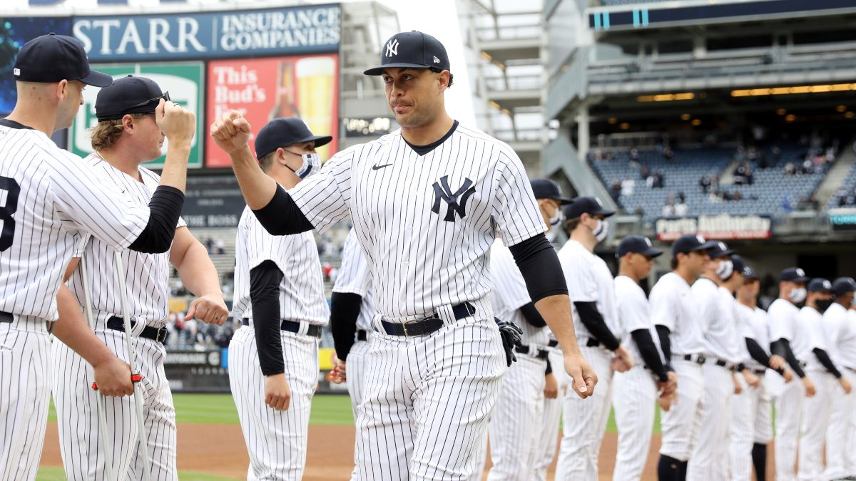 MLB Odds, Picks, Predictions: Yankees vs. Blue Jays Betting Preview (June 17) article feature image