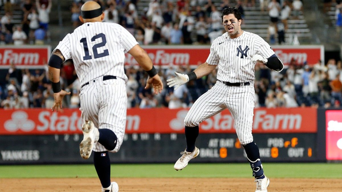 MLB Odds, Preview, Prediction for Yankees vs. Rays: Can Offense Overcome Strong Pitching in Tampa? (July 26) article feature image
