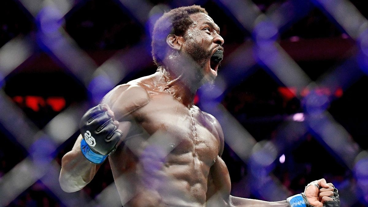 UFC Fight Night Odds, Promo: Bet $20, Win $200 if Your Fighter Throws a Punch! article feature image