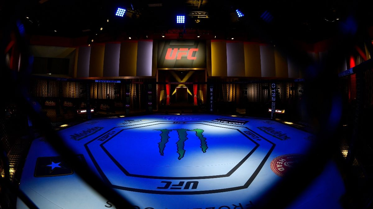 UFC Betting Trends: Are Favorites or Underdogs More Profitable on Pay-Per-View Cards? article feature image