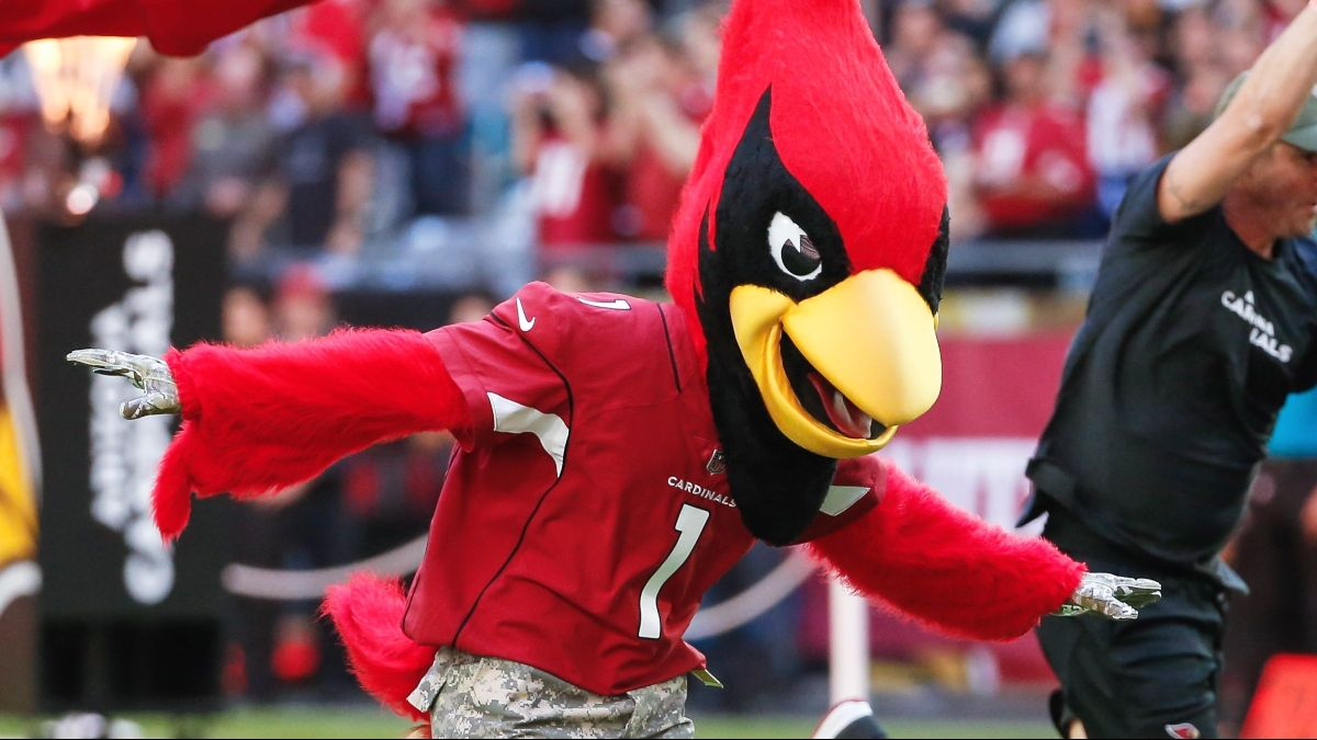 Cardinals vs. Vikings Odds, Promo: Bet Arizona at +99.5 (and Rising)! article feature image