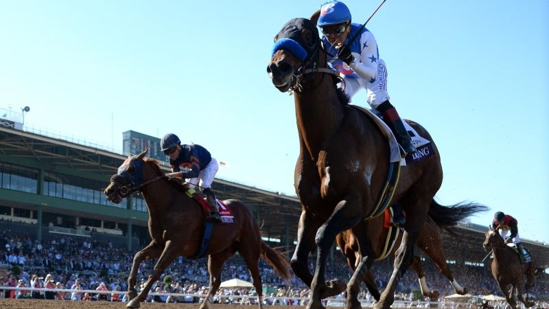 HORSE-RACING News, Vegas Odds and Betting Analysis | The