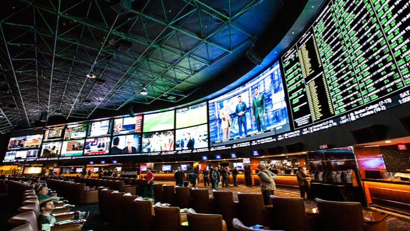 betting in a sports book