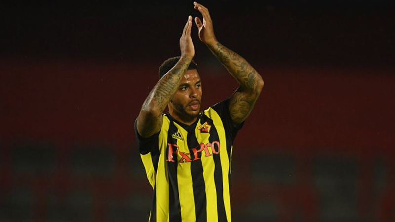 Watford 2018-19 Betting Preview: More Questions Than Answers For Hornets article feature image