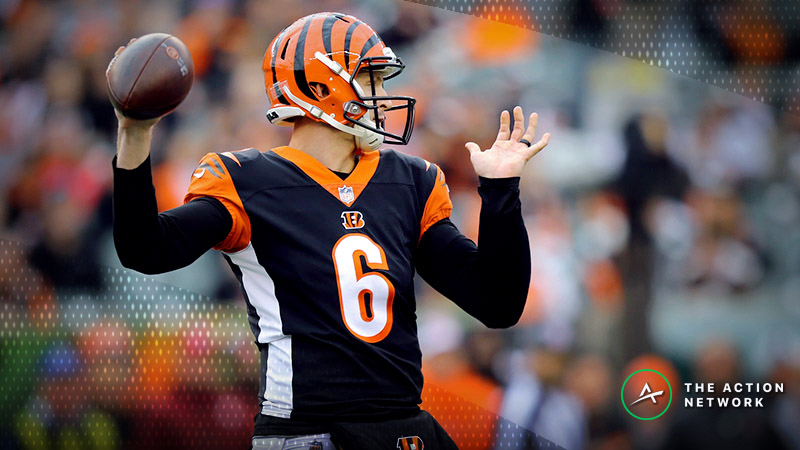 Broncos-Bengals Betting Preview: Nobody Believes in Jeff Driskel article feature image
