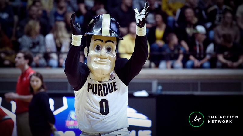 NCAA Tournament Vegas Roundup: Sharp Bettors Hit Montana, Purdue article feature image