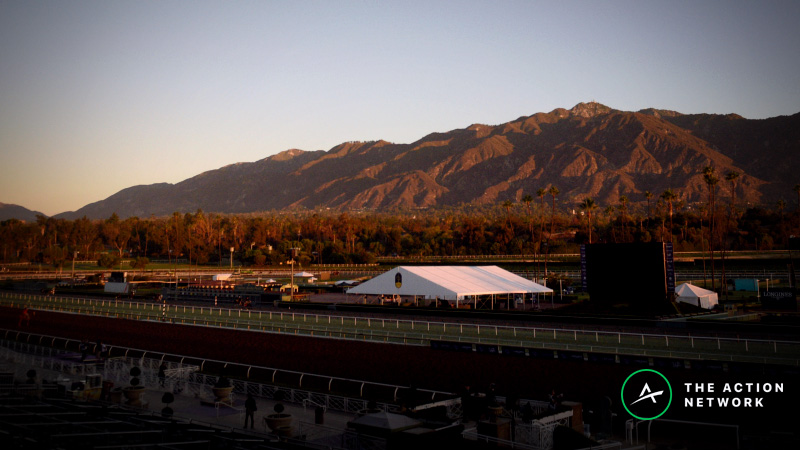 Racing Suspended at Santa Anita Following 21 Horse Deaths in 3 Months article feature image