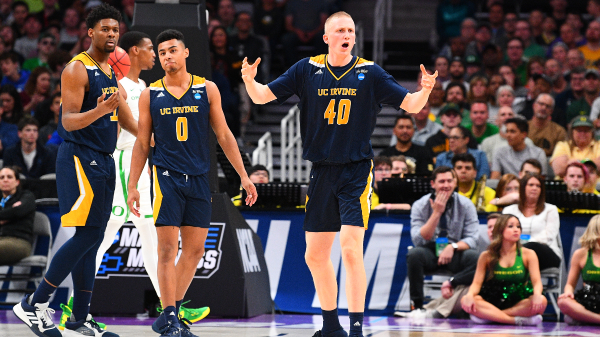 College Basketball Odds & Picks: Betting the Surprising UC Irvine vs. Cal State Northridge Over/Under article feature image