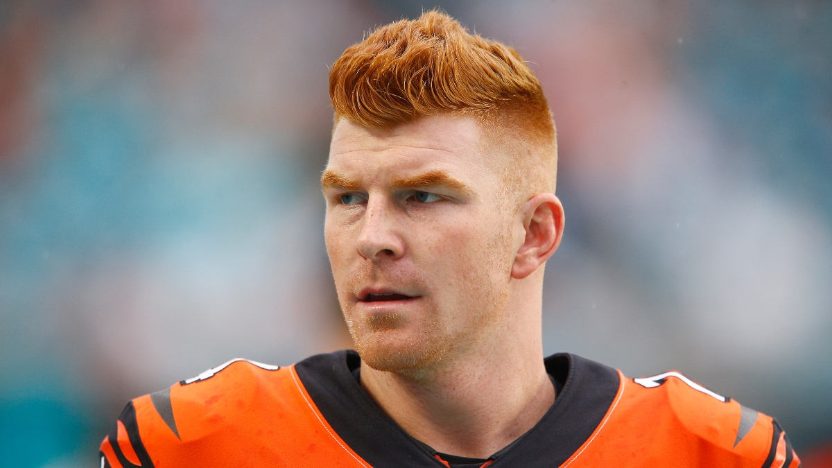Andy Dalton Trade Odds: Bears Favored to Deal for Dalton article feature image