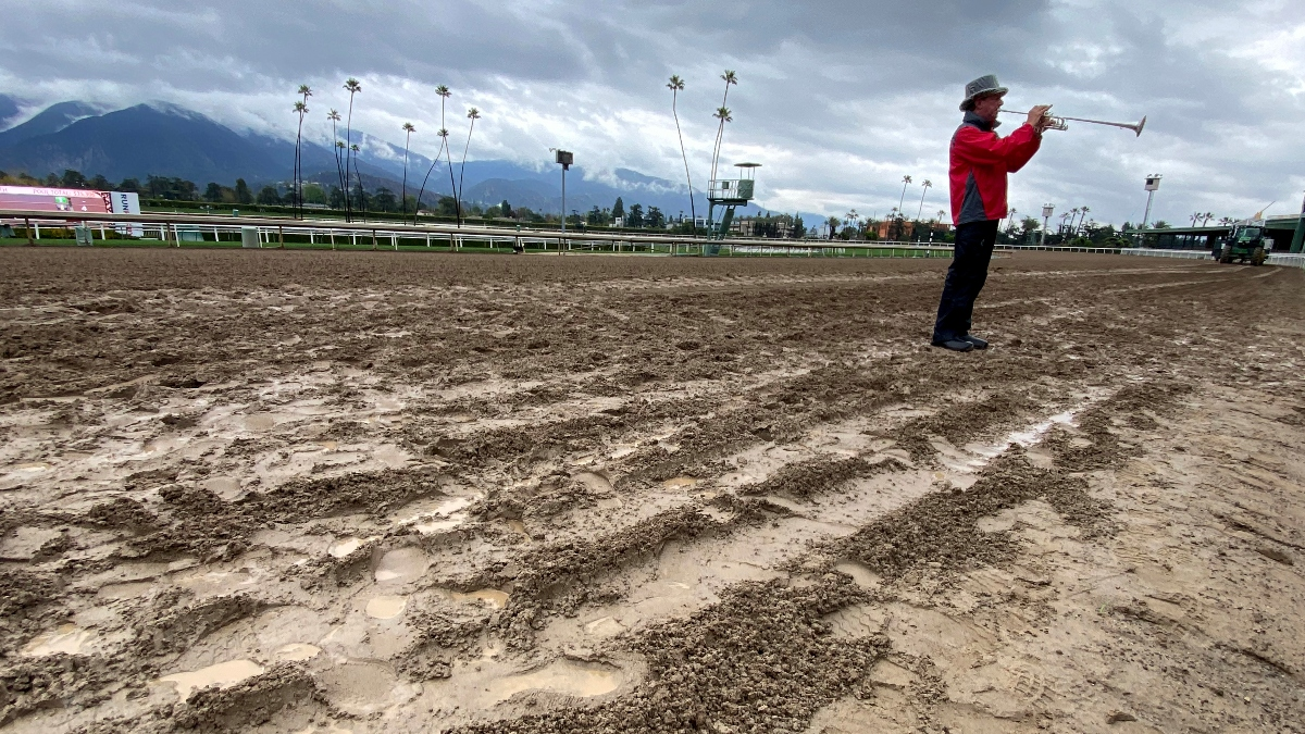 2020 Louisiana Derby Day Undercard Betting Picks and Betting Preview article feature image