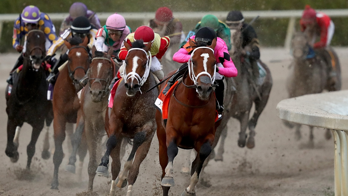 2020 Florida Derby Undercard Picks: Best Bets & Pick 6 Plays for 5 Saturday Races at Gulfstream Park article feature image