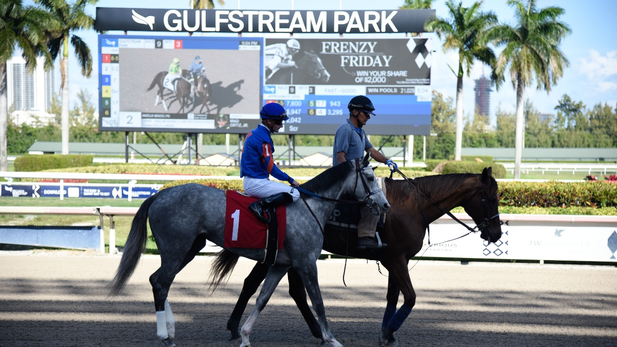 Horse Racing Picks for Sunday: Mandatory Payout Rainbow 6, Pick Five and Multi-Race Tickets for Gulfstream Park article feature image