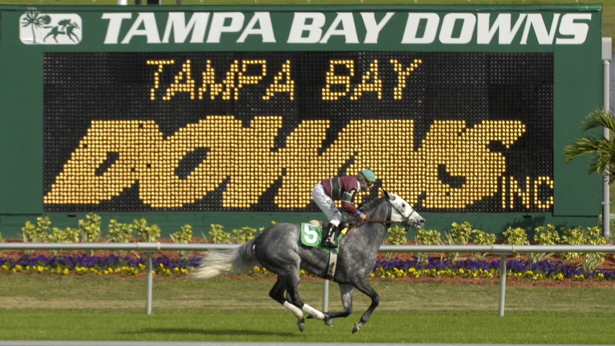 Horse Racing Picks for Wednesday, April 8: Best Value Bets for Tampa Bay Downs article feature image