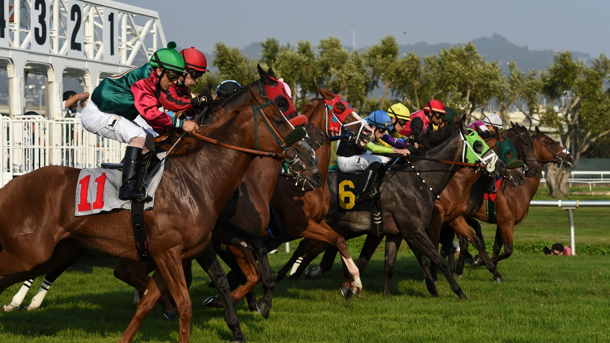 Horse Racing Picks for Thursday, May 14: Best Bets for Golden Gate Fields article feature image