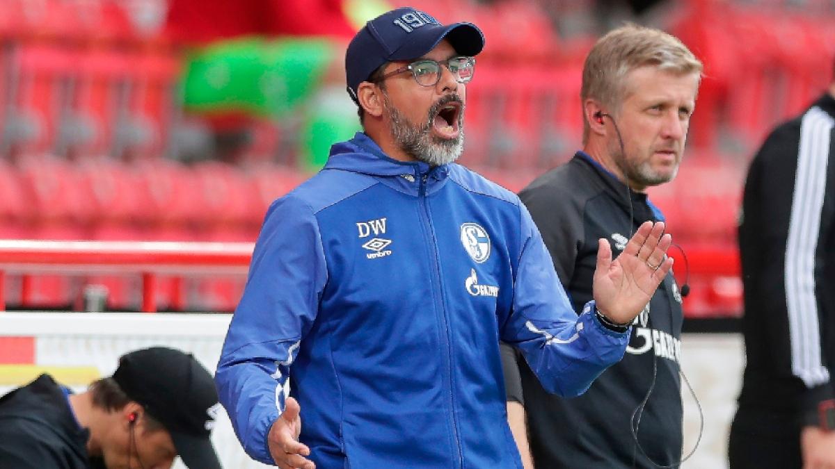 Bundesliga Betting Odds & Picks: Value on Underdog FC Schalke vs. Bayer Leverkusen? article feature image