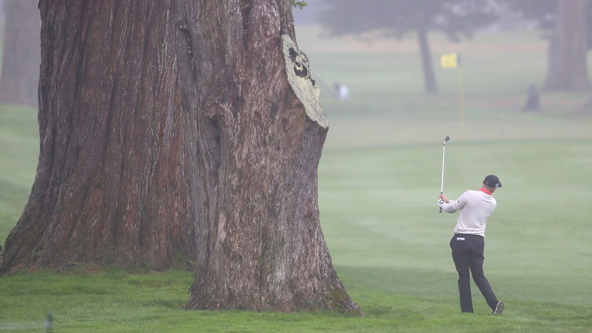 What to Know About TPC Harding Park Before Betting the PGA Championship article feature image