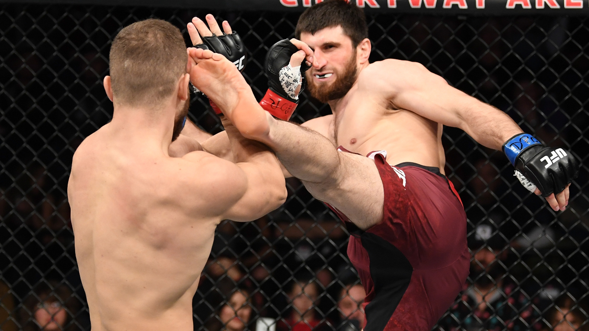 Magomed Ankalaev vs. Ion Cutelaba Odds, Pick & Prediction: Who Has the Edge in This UFC 254 Rematch? article feature image
